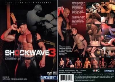Shockwave 3 (2011) cover
