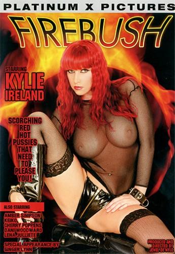 Firebush (2004) cover