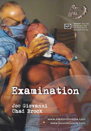 Examination cover