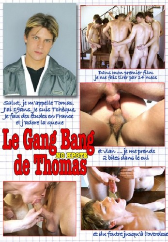 Le Gang Bang de Thomas (2008/DVDRip) cover