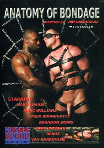 Anatomy Of Bondage cover