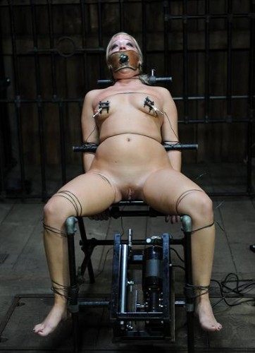 Machine for the destruction of the flesh