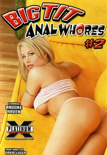 Big Tit Anal Whores 2 (2005) cover
