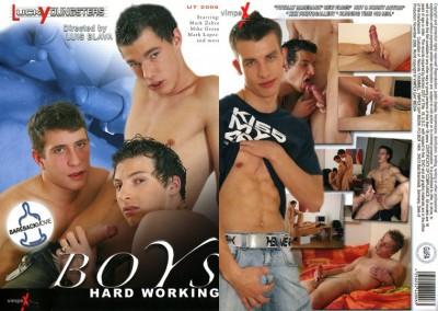 Boys Hard Working (Luis Blava / Vimpex Gay Media) cover