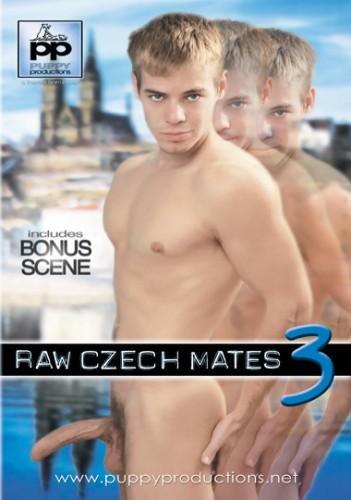 Raw Czech Mates 3 (2007) cover