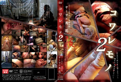 Hard Japan Torture 21 DVDRip cover