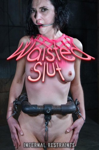 Waisted Slut cover