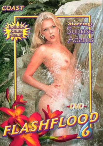 Flash Flood 6 (2002) cover