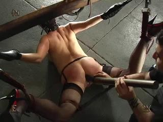 Insex - Mr. Pogo's Anal Adventure (912)