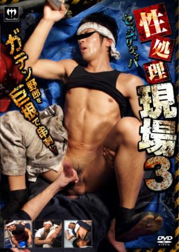 KoCompany - On-Site Sex Processing 3/ 性処理現場 3 cover