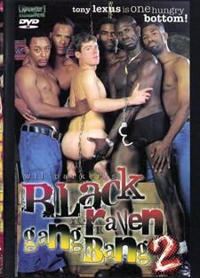 [Pacific Sun Entertainment] Black raven gangbang vol2 Scene #1 cover
