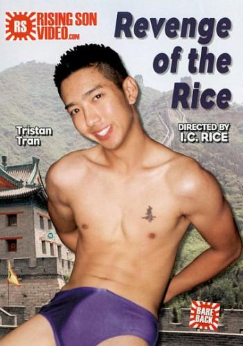 Revenge Of The Rice cover
