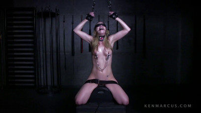 Tera Knightley On The Sybian cover
