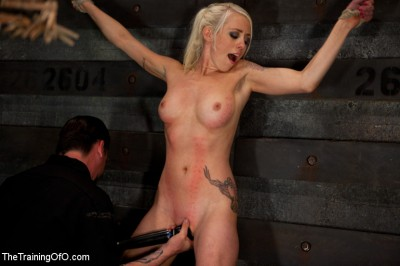 Lorelei Lee Day 3 - Learning the Ropes of Brutal Domination cover