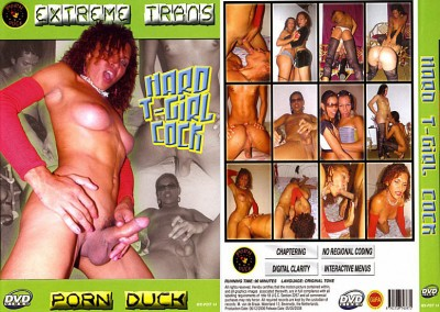 Hard T-girl Cock (2008) cover
