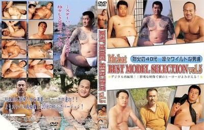 Best Model Selection Vol 5