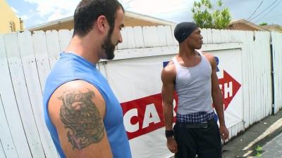 Thug vs. Bear (2012)