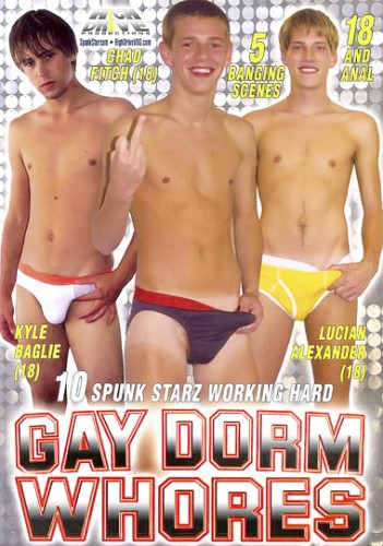 Gay Dorm Whores cover