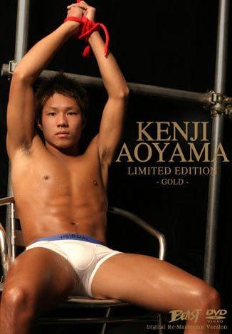 Japanese Stud - Kenji Aoyama - Gold Limited Edition