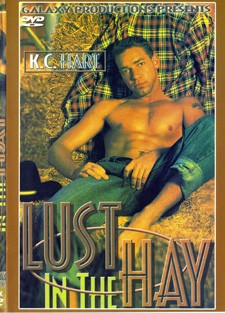 [Pacific Sun Entertainment] Lust in the hay Scene #2 cover