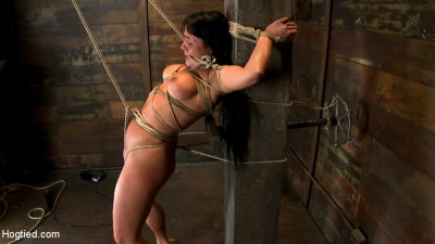 Hot sexy Hawaiian is bound to a pole, lifted to her tip toes with a brutal crotch rope. Made to cum! cover
