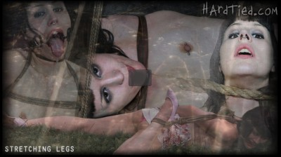 Hardtied - Aug 22, 2012 - Stretching Legs