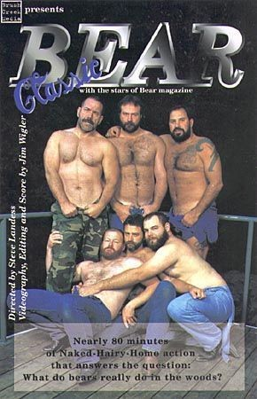 Classic Bear cover