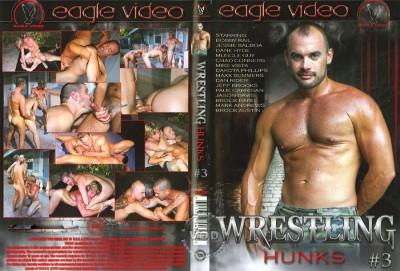 Wrestling Hunks 3 cover