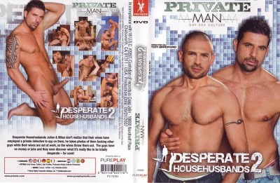 Desperate Househusbands 2