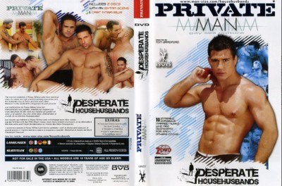 Desperate Househusbands cover