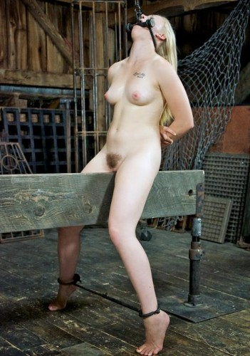 Humiliated and satisfied slave