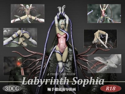 Labyrinth Sophia cover