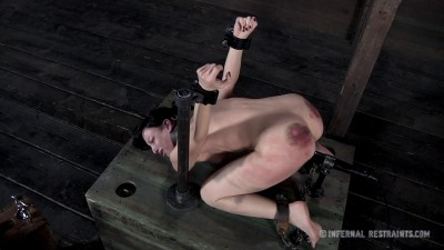 Queen of Pain 2   Elise Graves