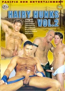 [Pacific Sun Entertainment] Hairy hunks vol2 Scene #3 cover