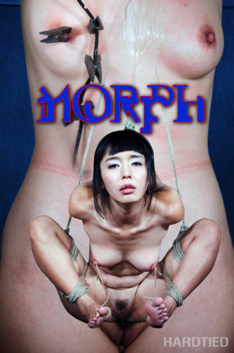 Morph- Marica Hase cover