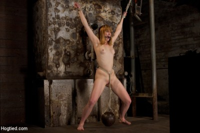 Clothes pins are whipped off this sexy amazons body. Nasty Crotch rope keeps her screaming & cumming cover