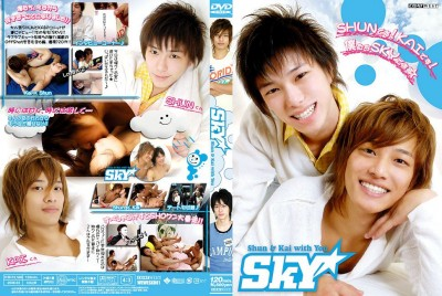 Sky (2008) DVDRip cover