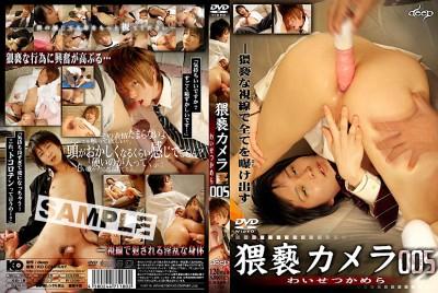 Obscene Camera 005 cover
