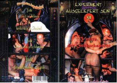 Experiment Ausgeliefert Sein cover