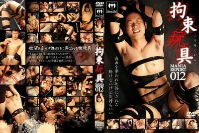 Mania Report 012 cover
