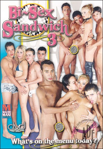 Bi-sex Sandwich 3 cover