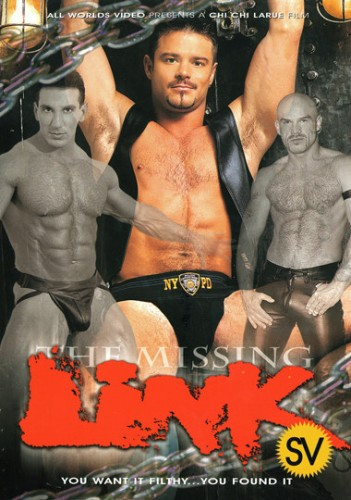 The Missing Link cover