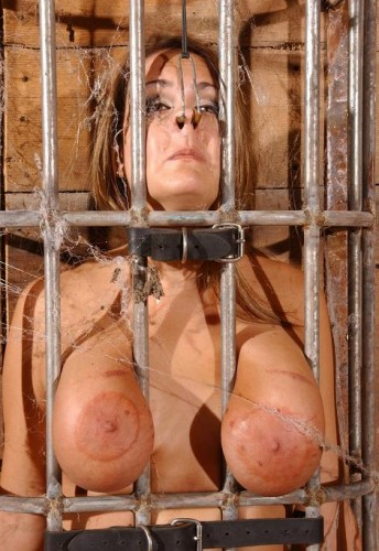 Caged Pig cover