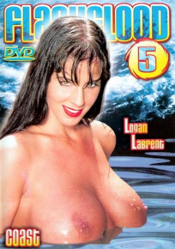 Flash Flood 5 (2002) cover