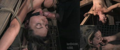 Hardtied Porn Videos Part 3 ( 20 scenes) MiniPack