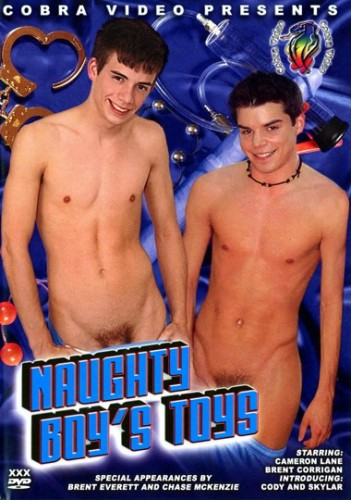 Naughty Boy's Toys cover