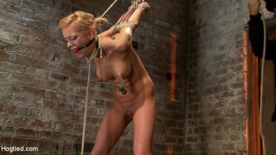 Stappado'd, elbows together, legs spread, nipples clamped & weighted, flogged, made to cum & suffer! cover