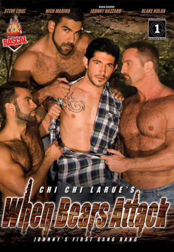 When Bears Attack cover