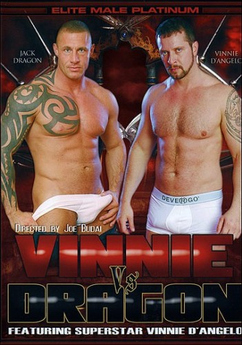 Vinnie vs. Dragon cover