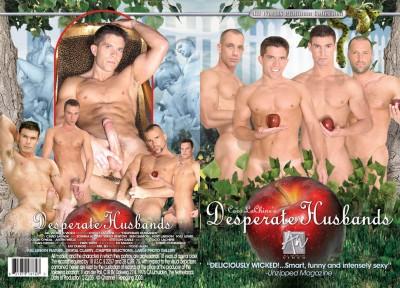Desperate Husbands (2005) cover
